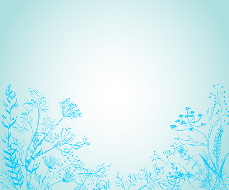 flowers on white: Medicinal herbs and plants against a blue background Illustration