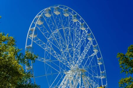 Ferris wheel whith pines on clear blue sky background in Anapa.