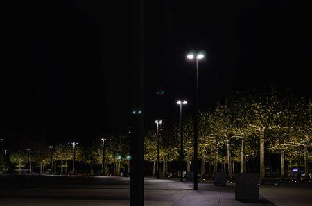 Los árboles del Parque se iluminan por la noche. Aparcar en Krasnodar. Foto de archivo