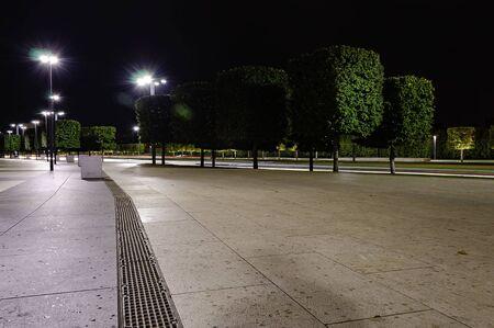 Trees illuminated square shape at night next to the road. Park in Krasnodar. Foto de archivo