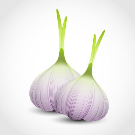 garlic clove: Garlic
