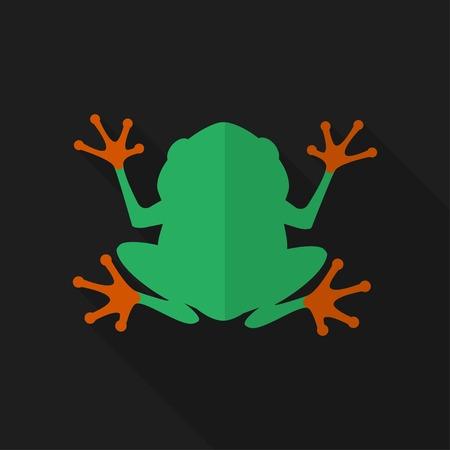 grenouille: Grenouille plat avec ombre. Illustration