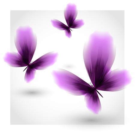 fluttering: Violet butterflies fluttering air