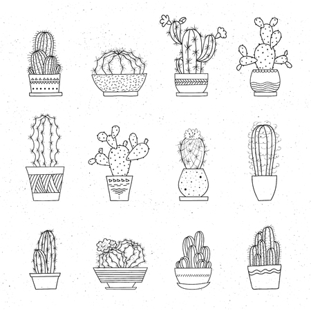 Decorative potted cacti. Vector set of hand-drawn sketched elements