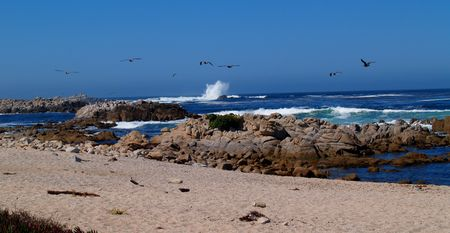 A large wave splashing with sea gulls flying overhead in a beautiful clear blue sky along a rocky sandy coast south of Santa Barbara, California  Stock Photo - 4203562