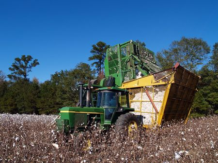 dumping: Cotton Picker Dumping