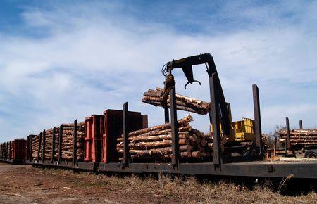 flatcar: Crane loading cut logs on a railcar.
