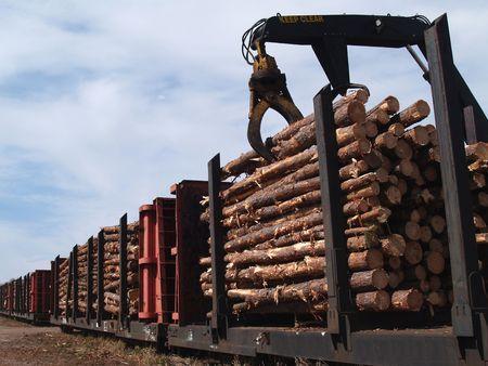 logging railways: Crane loading cut logs on a railcar.         Stock Photo