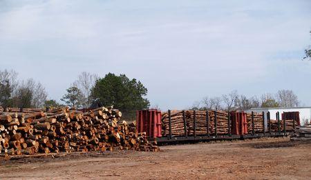 logging railroads: Stack di taglio di alberi in attesa di essere caricato a fianco uno caricato flatcar.