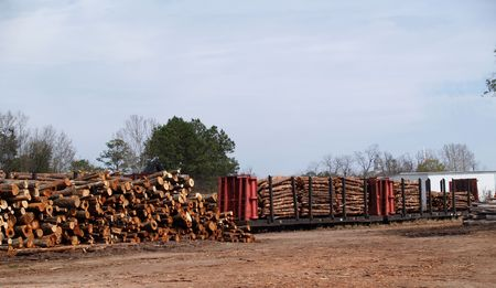 logging railroads: Stack of cut trees waiting to be loaded beside a loaded flatcar.     Stock Photo