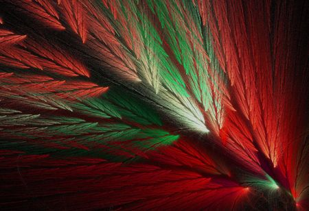 Red and green Christmas colored feather fractal shaped similar to parrot wings. Stock Photo