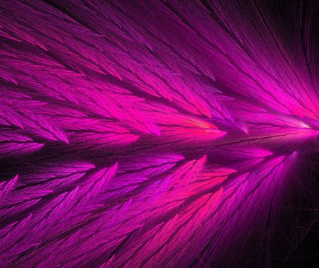 variegated: Hot pink and purple colored feather fractal shaped similar to parrot wings.