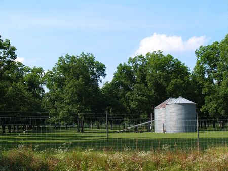 Two silos sitting beside a pecan grove in south Georgia. Stock Photo - 5228819