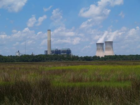 nucular: Nuclear power plant with steam coming from the chimneys as seen behind a Florida marsh or wetland beneath a cloudy blue sky.