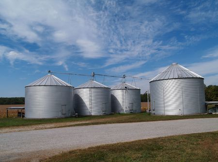 Four farm silos beside a country rock road in front of  ripening soybean field with plenty of copy space. Standard-Bild