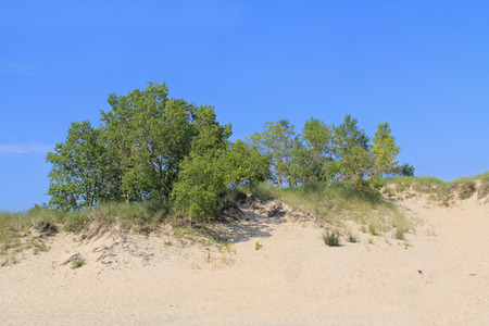 ludington: Sand dunes in Ludington State Park on the shore of Lake Michigan in Michigan, USA. Stock Photo