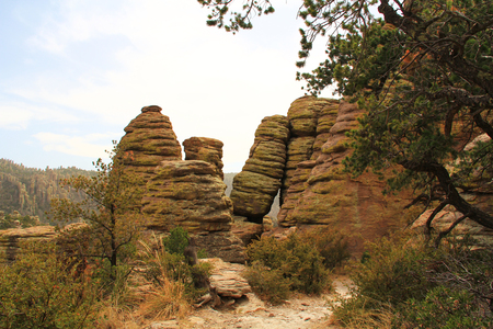 hoodoos: Echo Canyon rock hoodoos formation in Chiricahua National Monument near Wilcox, in southern Arizona, USA. Stock Photo