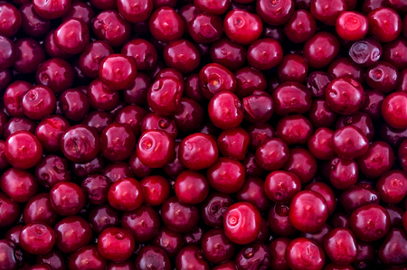 drupe: The word cherry refers to a fleshy fruit (drupe) that contains a single stony seed. The word cherry comes from the French word cerise, which comes in turn from the Latin words cerasum and Cerasus.