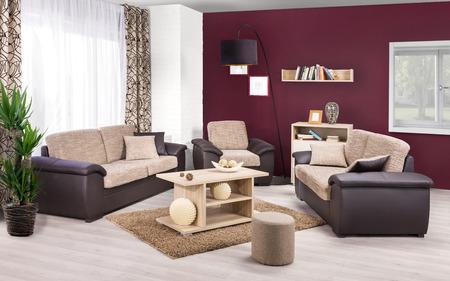 modern living room: Interior of a modern living room in color