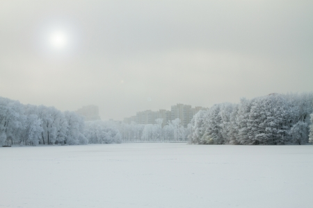 park and the river froze. Trees in the snow and in the distance can be seen the frozen cities photo