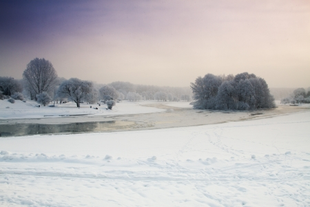 winter landscape of the park