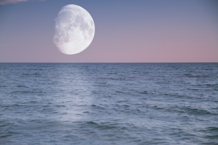 evening over the sea shines large moon 写真素材