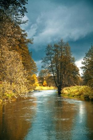 de zon op de rivier die stroomt door het bos schijnt