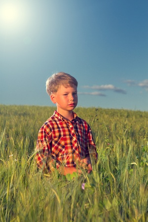 thoughtful boy at sunset in a field of wheat photo