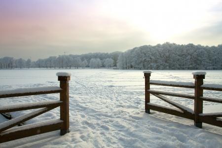 winter wonderland: Snowy winter forest fairy Stock Photo