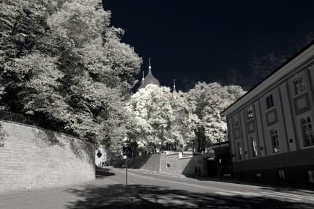 nevsky: Tallinn. Alexander Nevsky Cathedral
