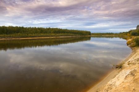 siberia: Siberia forest.Yamal