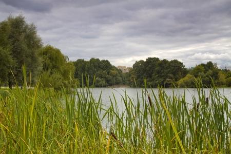 Fluss fließt durch den Park im Herbst.
