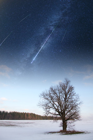 starry sky in winter.  photo