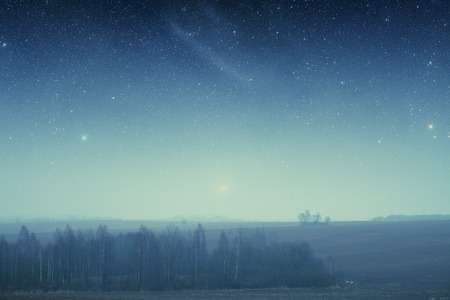 field at night.  photo