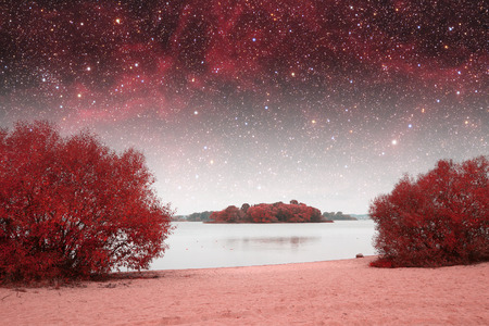 spring night infrared photography.