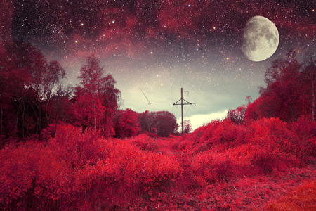 red night.  photo