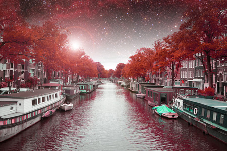 amsterdam autumn night.  photo