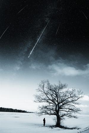 starry sky in winter. photo