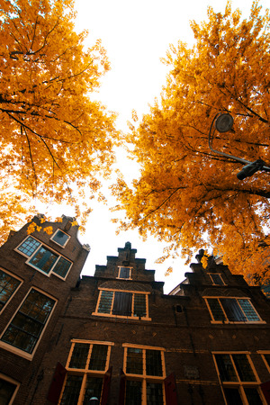 Amsterdam autumn. beautiful places in Europe photo