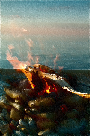 inviting: Inviting campfire on the beach during the summer Stock Photo