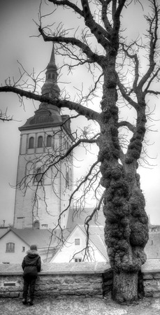 estonian: Old streets of European cities. Cozy cottages. Tallinn the capital of Estonia on the Baltic Sea.