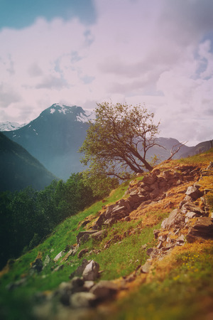 scenic spots: mountains in summer. scenic spots in nature.