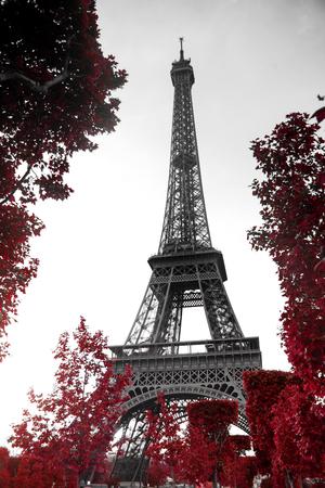 Uitzicht op de Eiffeltoren in zwart-wit stijl met selectieve kleuring Stockfoto