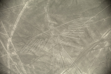 condor: Unesco Heritage: Lines and Geoglyphs of Nazca, Peru - Condor