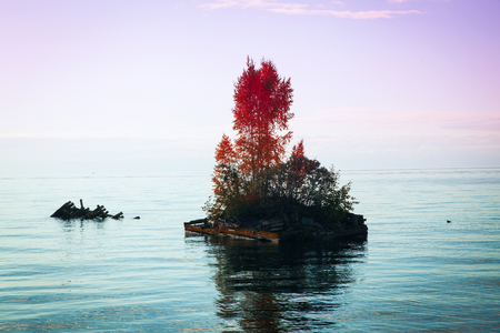 island: Island on Lake Baikal in the autumn. Gradient of two colors Serenity and Rose Quartz. Stock Photo