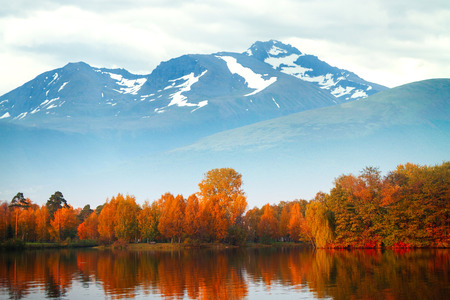 scandinavian landscape: Trees reflected in a lake in the background of the mountains.