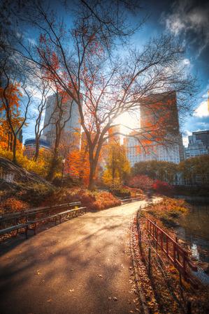 New York City Central Park Manhattan panorama in de herfst meer met wolkenkrabbers en kleurrijke bomen met reflectie.