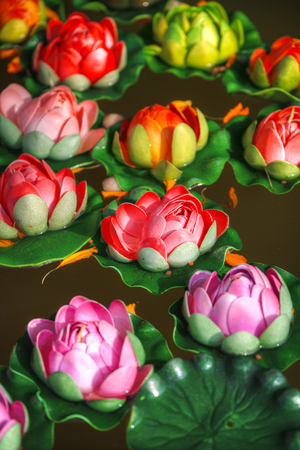 In Buddhism, the lotus is a traditional symbol of purity.