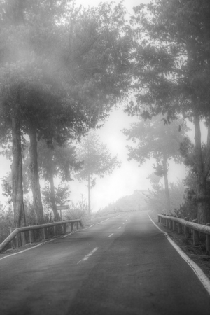 road in the clouds in the mountains. Tenerife, Spain, Europe. black and white photography. minimalism