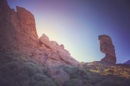 Echium wildpretii Berühmter Finger Gottes Felsen im Teide Nationalpark. Teneriffa - Kanarische, Spanien